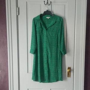 CAbi green and white shirt dress